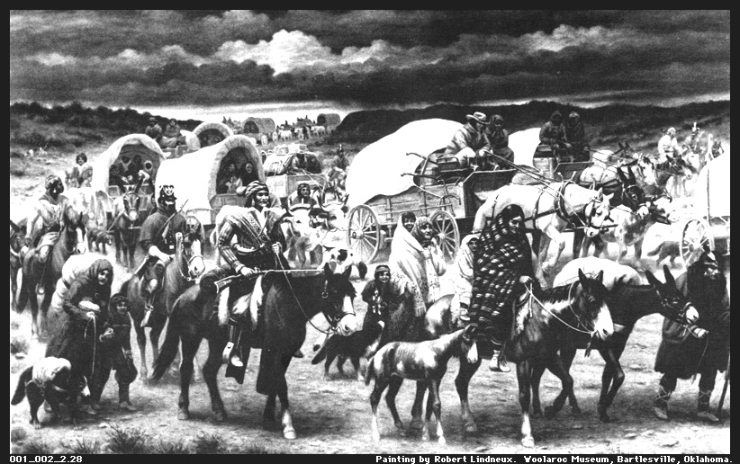 """The American Indian Holocaust, known as the """"500 year war"""