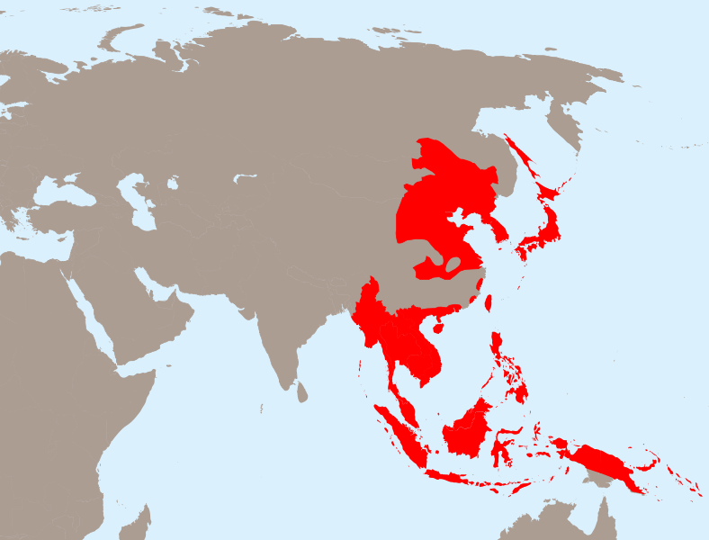 japanese occupation and the creation of nation states in southeast asia Asia's 5 most lethal wars of war raged across southeast asia that shifted with the entry of the united states japan's inability to support garrisons.