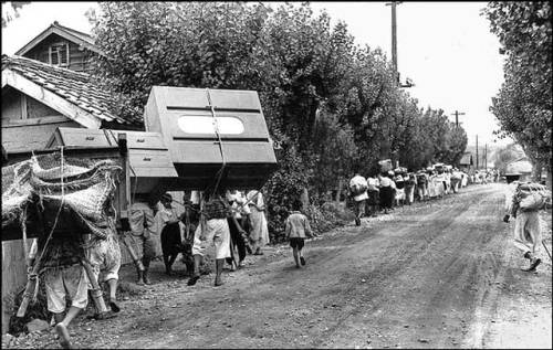 Long lines of refugees fleeing from Yongdong on 26 July 1950. The day before, hundreds of refugees were massacred by U.S. soldiers and warplanes at bridge at No Gun Ri, eight miles away.